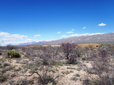 Coyote Creek (1-395) Residential Lots & Land For Sale: 14528 E Circle H Ranch Place #380