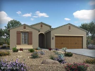 Tucson Single Family Home For Sale: 6776 E Via Arroyo Azul