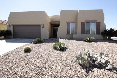 Tucson Single Family Home For Sale: 9536 E Corte Del Sol Brillante