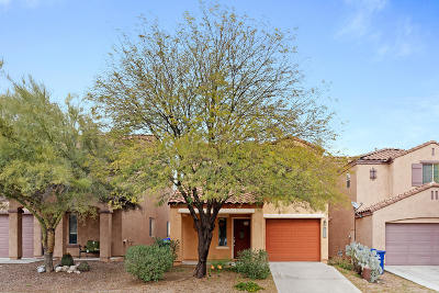 Sahuarita Single Family Home Active Contingent: 14363 S Camino Vallado