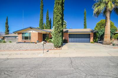 Tucson Single Family Home For Sale: 725 S Santa Ana Drive