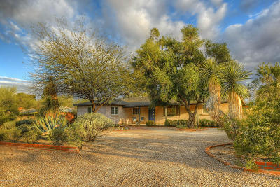 Tucson Single Family Home For Sale: 4111 E Holmes Street