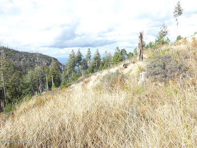 Mt. Lemmon Residential Lots & Land For Sale: 12988 N Loma Linda Ext Road #13