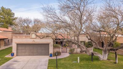 Tubac Single Family Home For Sale: 20 Calle De Hoy