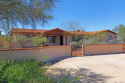 Tucson Single Family Home For Sale: 3850 W Ironwood Hill Drive