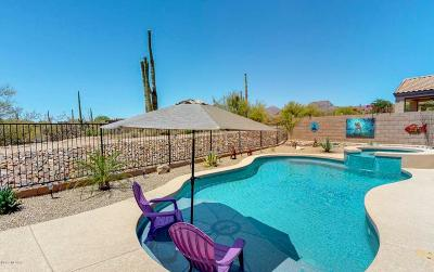 Marana Single Family Home For Sale: 12321 N Lost Shadow Court