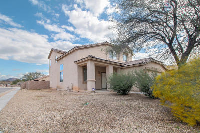 Tucson Single Family Home For Sale: 7147 S Oakbank Drive