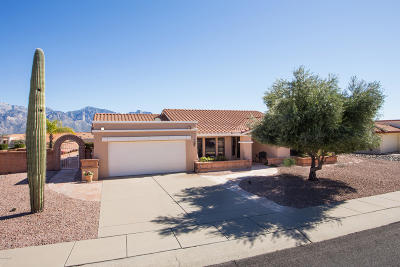 Oro Valley Single Family Home For Sale: 1454 E Bright Angel Drive