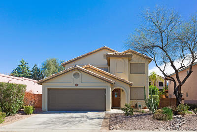 Pima County Single Family Home For Sale: 711 W Annandale Way