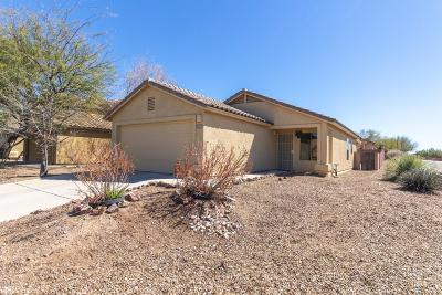 Pima County Single Family Home Active Contingent: 4084 E Agate Knoll Drive