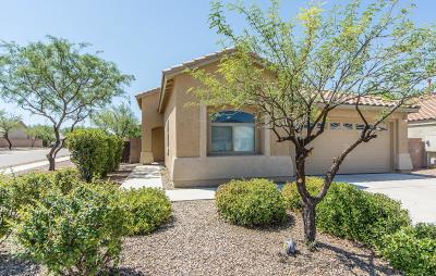 Tucson Single Family Home For Sale: 10542 E Geyer Willow Road