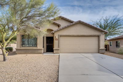 Tucson Single Family Home For Sale: 7171 S Redwater Drive