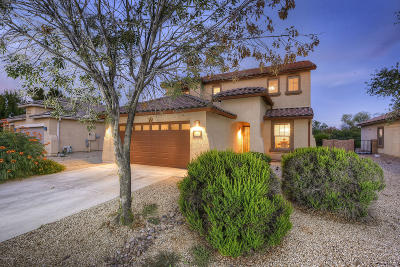 Marana Single Family Home For Sale: 11251 Harvester Drive