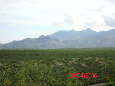 Tubac Residential Lots & Land For Sale: Camino Talavera #68