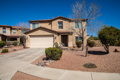 Tucson Single Family Home For Sale: 3721 E Capriole Place