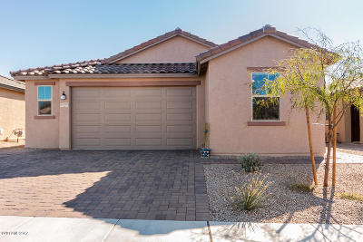 Tucson Single Family Home For Sale: 8899 N Hardy Preserve Loop