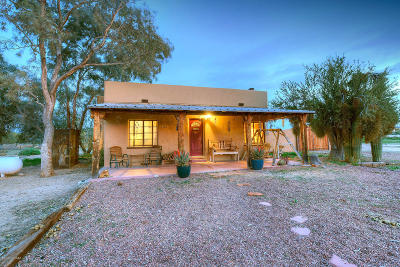Tucson Single Family Home For Sale: 3900 W Oasis Drive