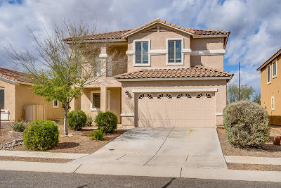 Sahuarita Single Family Home For Sale: 518 W Calle Cajeta