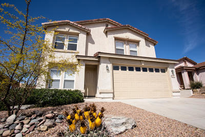 Pima County, Pinal County Single Family Home For Sale: 13275 N Tanner Robert Drive