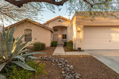 Tucson Single Family Home For Sale: 9565 E Grand Teton Road