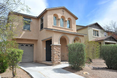 Pima County Single Family Home Active Contingent: 6993 S Ladys Thumb Lane