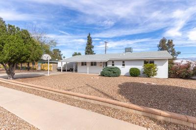 Pima County Single Family Home For Sale: 913 S Carnegie Drive