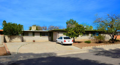 Pima County Single Family Home For Sale: 9221 E Dolores Street