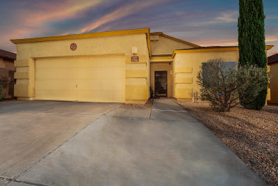 Pima County Single Family Home For Sale: 5788 E Calle Misericordia