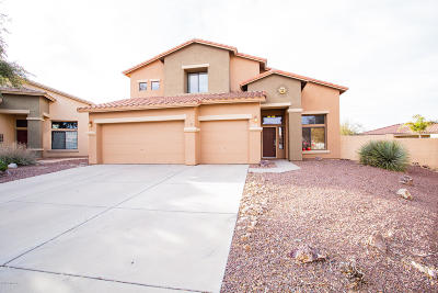 Sahuarita Single Family Home Active Contingent: 146 W Calle Tierra Sandia