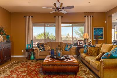 Pima County Single Family Home For Sale: 9640 S San Esteban Drive