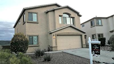 Pima County Single Family Home For Sale: 7239 S Avenida De La Palmar