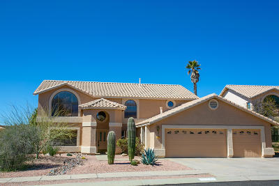 Pima County Single Family Home For Sale: 12591 N Granville Canyon Way