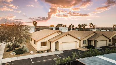 Pima County Single Family Home For Sale: 3839 E Presidio Road