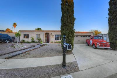 Tucson Single Family Home For Sale: 9742 E Cannon Place