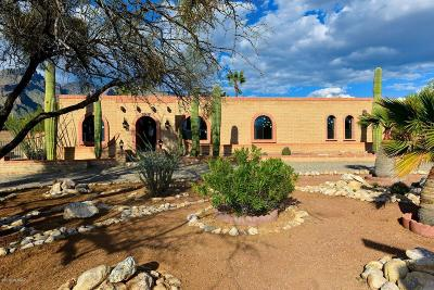 Pima County Single Family Home For Sale: 3505 E Guthrie Mountain Place