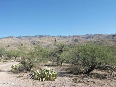 Residential Lots & Land For Sale: 353 E Red Hill Ranch Road 1