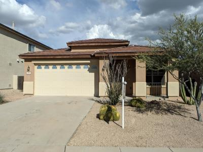 Oro Valley Single Family Home For Sale: 12998 N Yellow Orchid Drive