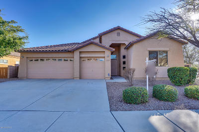 Pima County Single Family Home For Sale: 10450 E Black Willow Drive