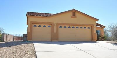 Pima County Single Family Home For Sale: 1002 N Deep Rock Drive
