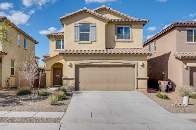 Sahuarita Single Family Home For Sale: 686 W Calle Canto Sereno