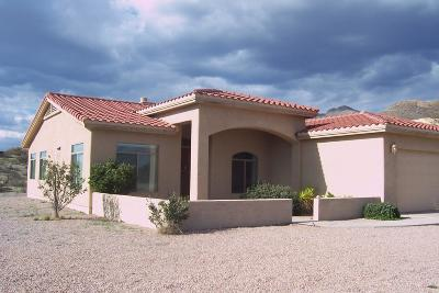 Rio Rico Single Family Home For Sale: 410 Calle Pegaso