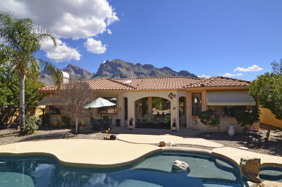 Tucson Single Family Home For Sale: 151 E Silverstone Place