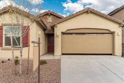 Single Family Home Active Contingent: 11467 E Squash Blossom Loop