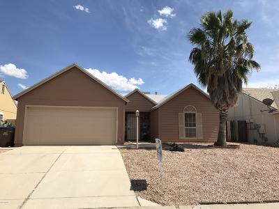 Pima County Single Family Home For Sale: 8680 N Holly Brook Avenue
