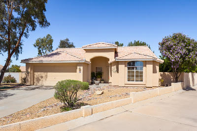 Tucson Single Family Home For Sale: 6712 W Alegria Drive