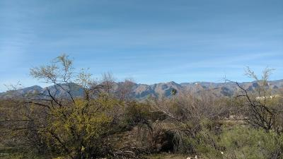 Tucson Residential Lots & Land For Sale: 8815 E Tanque Verde Road #1