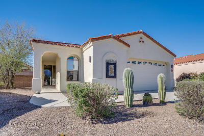Pima County, Pinal County Single Family Home For Sale: 2841 N Vactor Ranch Place