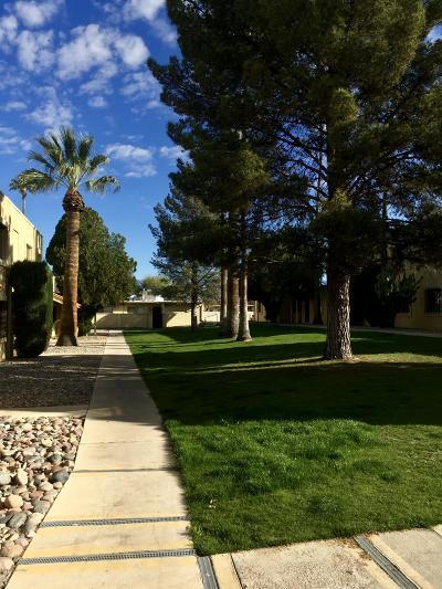 Tucson Condo Active Contingent: 810 S Kolb Road #32