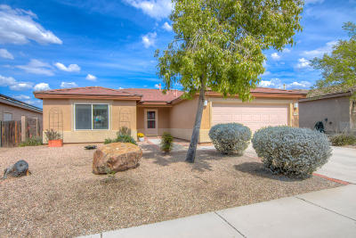 Tucson Single Family Home For Sale: 7620 W Gold Rock Place