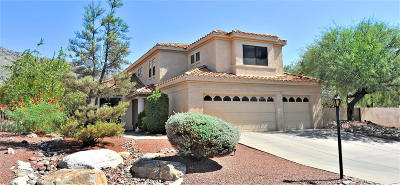 Tucson Single Family Home For Sale: 6280 N Calle Campeche